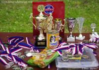 Alíkův pohár 2013