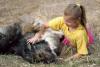 kavkazský pastevecký pes Rocky